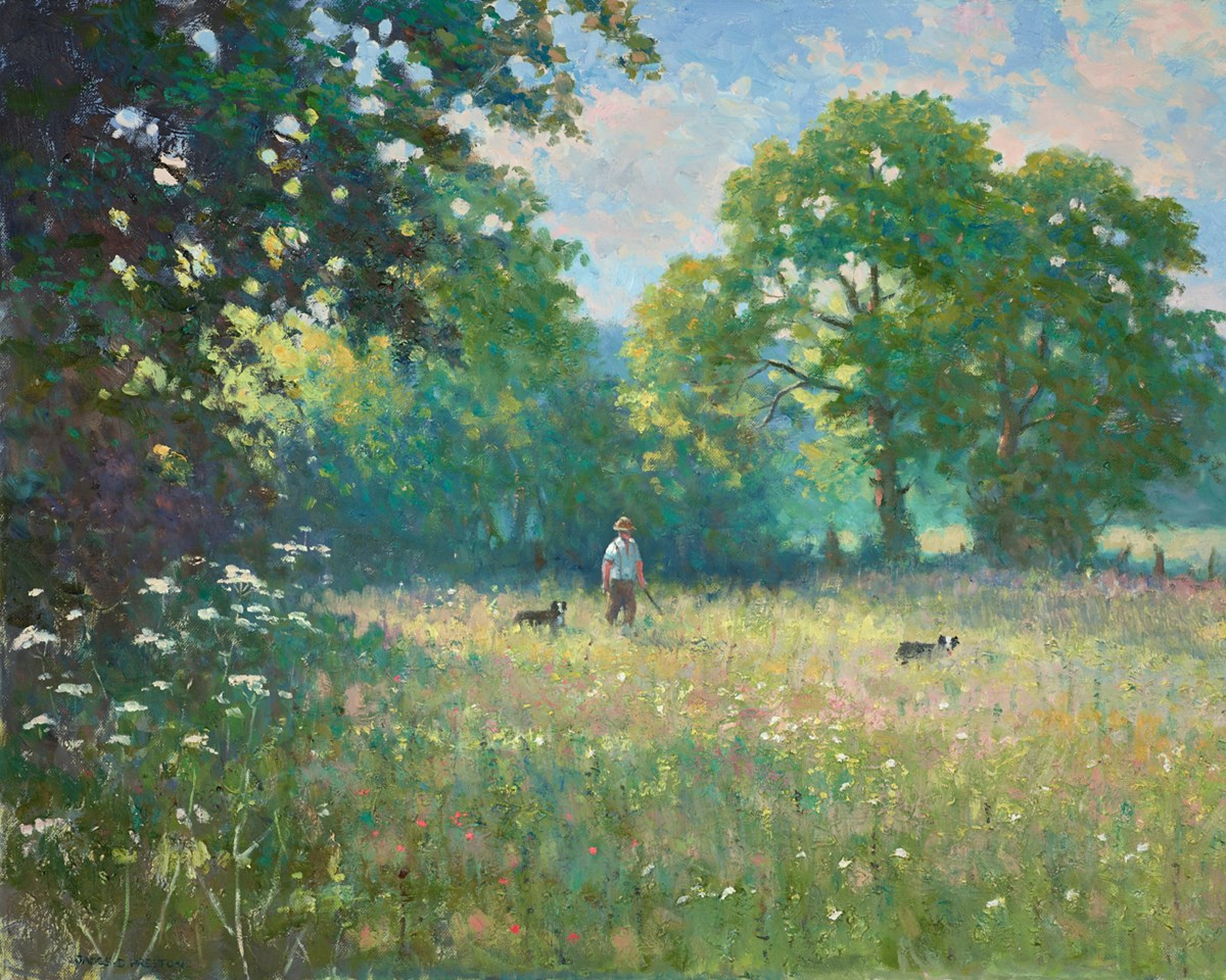 Summer Meadow Walk